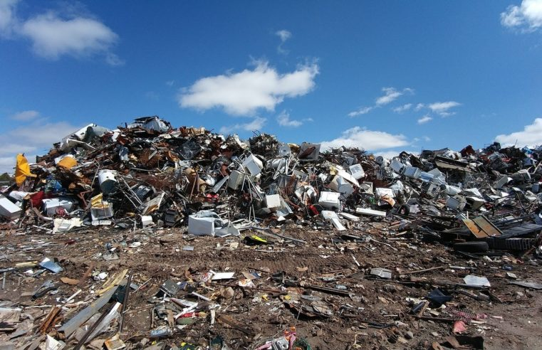 Why Hire a Junk Removal Company for Your Business Needs?